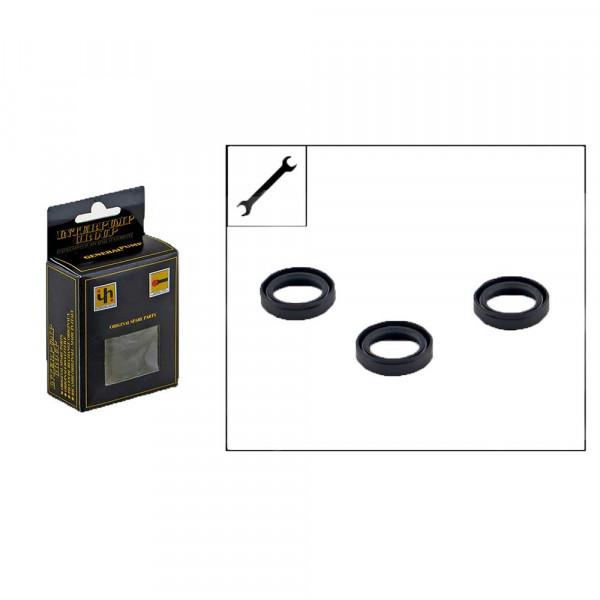 Reparatur Satz IP KIT159 Öldichtung Ehrle Hochdruckreiniger